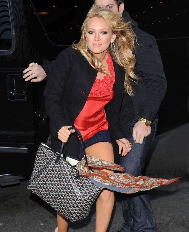 Louis Vuitton vs Goyard: Celebrity Tote Showdown -PurseBop