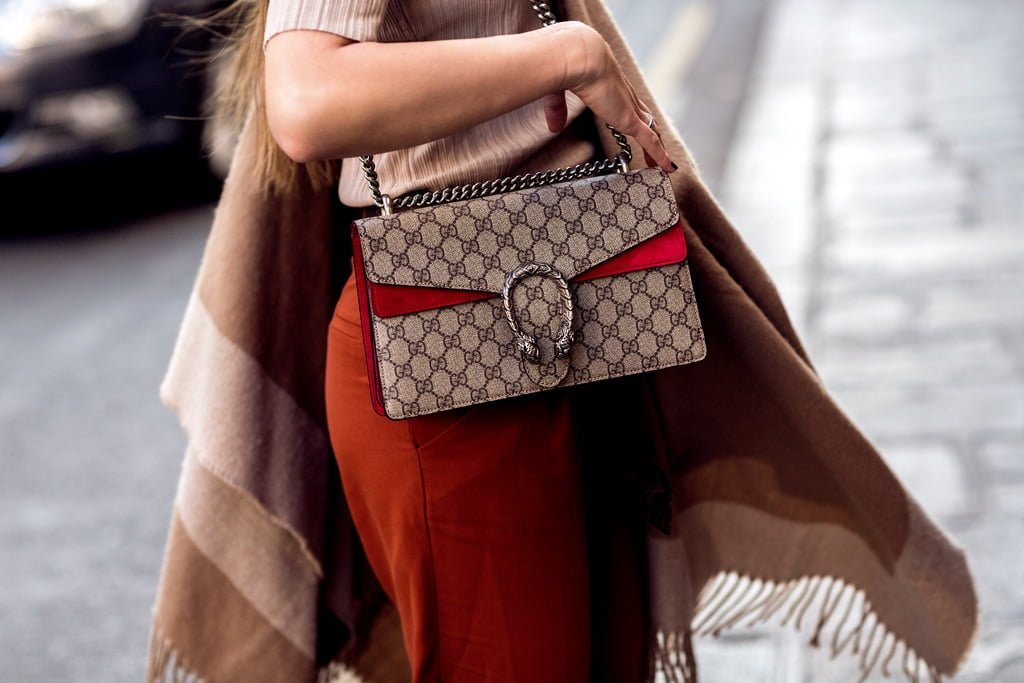 YAY or NAY: The Gucci Dionysus Bag