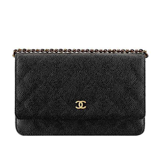 f455b017c692 Chanel Wallet On Chain Bag Shaper | Stanford Center for Opportunity ...
