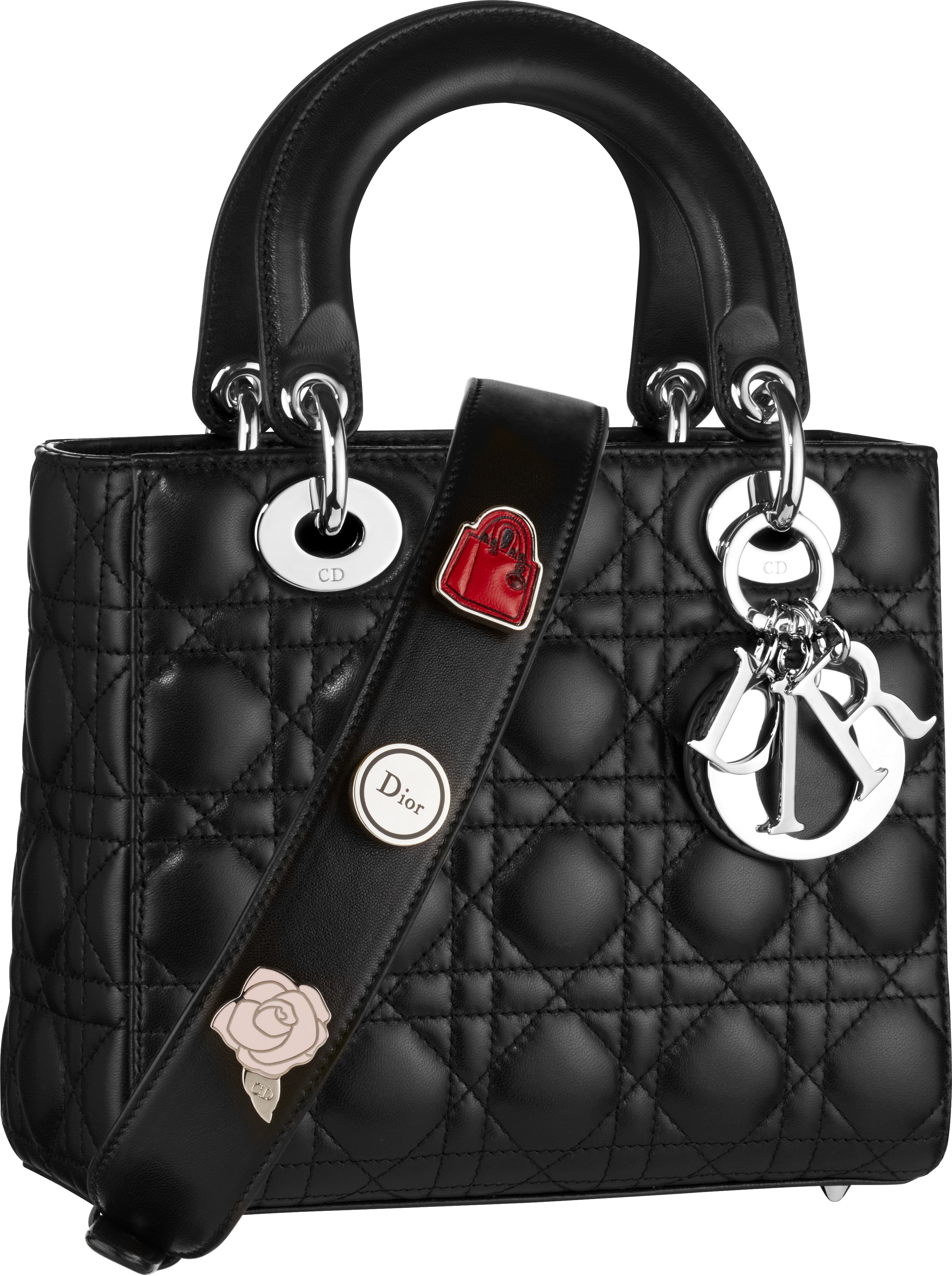 The Cruise 2017 collection Lady Dior bags will feature multiple pins that  can be interchanged along the strap. 87446d5cb3