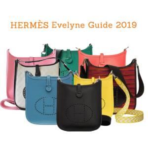 Hermes Evelyne