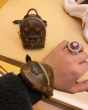 Louis Vuitton party bracelet bumbag Palm Springs backpack