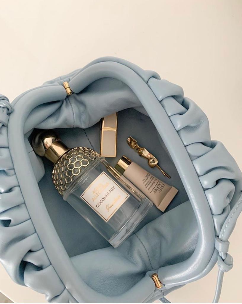 Iconic Bottega Veneta Bags