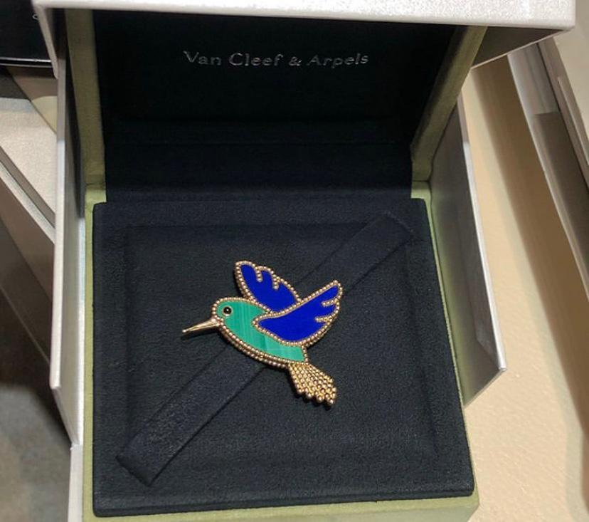 VCA hummingbird clip
